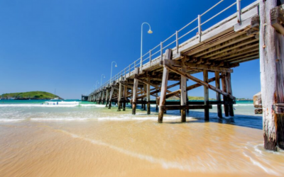 Case Note: Polglase v Coffs Harbour City Council (No. 2) [2019] NSWCA 1848